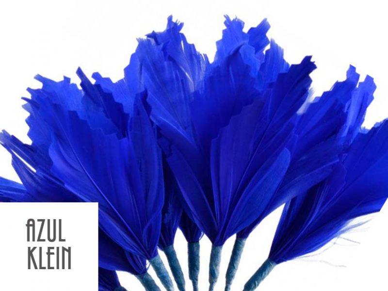 Diadema de plumas azul klein