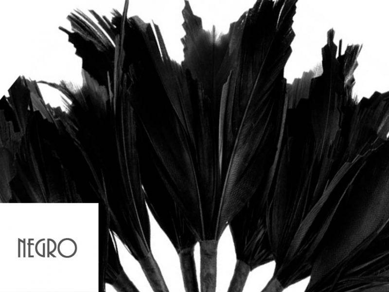 Diadema de plumas color negro