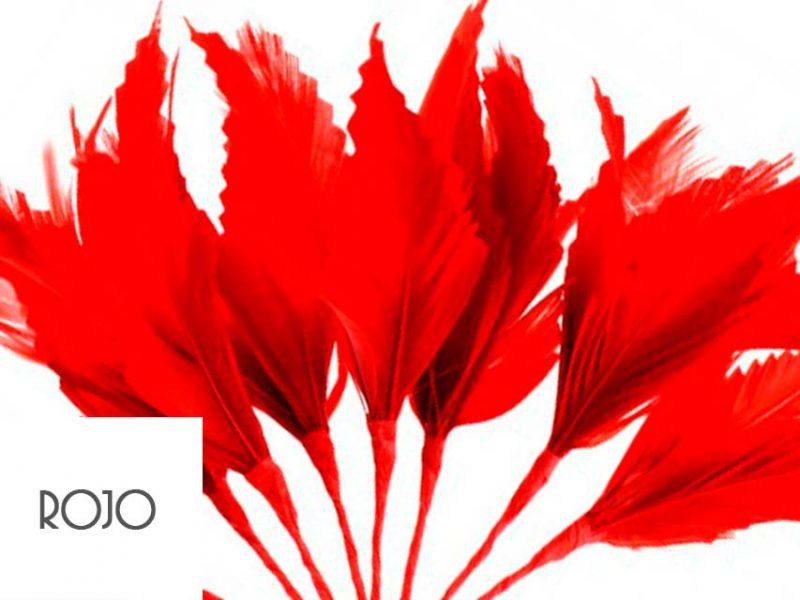 Diadema de plumas color rojo